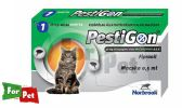 PESTIGON SPOT ON CAT 1X